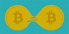 https://cdn.alza.at/Foto/ImgGalery/Image/bitcoin-vs-bitcoincash-nahled.jpg