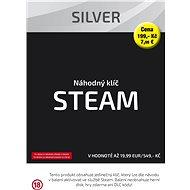 Silberner Schlüssel (Steam) - Gaming Zubehör