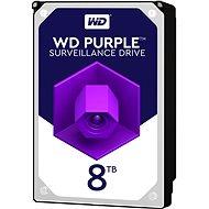 WD Purple NV 8 TB - Festplatte
