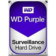 WD Purple NV 10TB - Festplatte