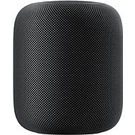 Apple HomePod Space Grey - Sprachassistent