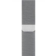 Apple 38mm/40mm Milanaise Armband - Armband