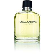 DOLCE & GABBANA Pour Homme EdT 125 ml - Herren Eau de Toilette