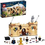 LEGO® Harry Potter™ 76395 Hogwarts™: Erste Flugstunde - LEGO-Bausatz
