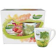 Pickwick Geschenkbox mit Früchtetees mit einer Tasse SOMMER - Tee