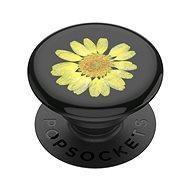 PopSockets PopGrip Gen.2, Pressed Flower Yellow Daisy, gelbe Blume in Harz eingebettet - Handyhalter