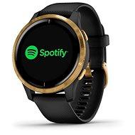 Garmin VENU Schwarz / Gold - Smartwatch