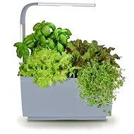 TREGREN T3 Kitchen Garden, grau - Smart-Blumentopf