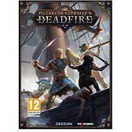 Pillars of Eternity 2: Deadfire - PC-Spiel