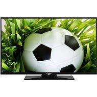"24"" Hyundai HLP 24T339 - Fernseher"
