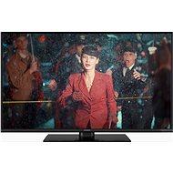 """49"""" Panasonic TX-49FX550E - Fernseher"""