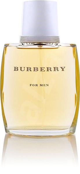 Burberry For Men Edt 100 Ml Herren Eau De Toilette Alzaat